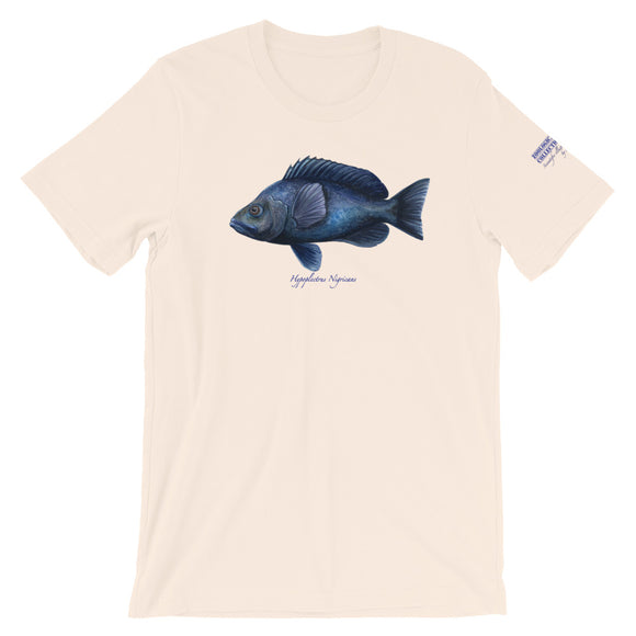 Hypoplectrus Nigricans Hamlet Fish T-Shirt by Spawnicorn