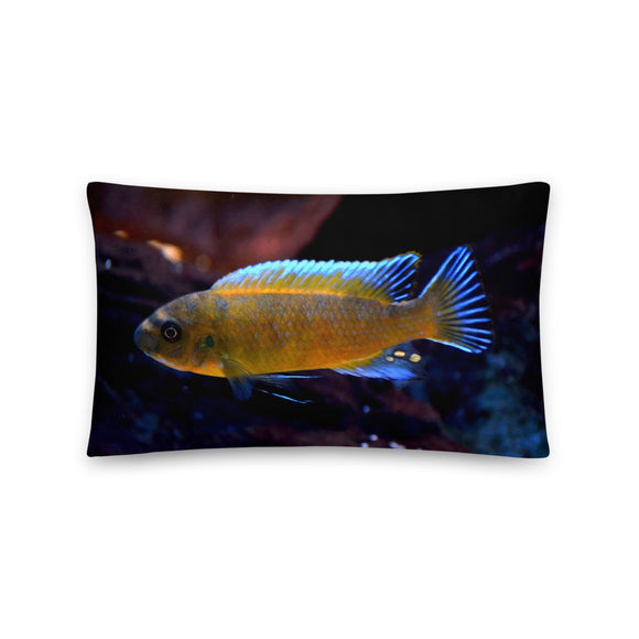 Labeotropheus Trewavasae Chilumba Red Throw Pillow