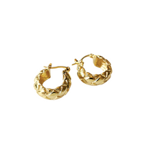 Load image into Gallery viewer, TINA EARRINGS