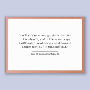 Song Of Solomon (canticles) 3:2 - Old Testiment - I will rise now, and go about the city in the streets, and in the broad ways I will see...