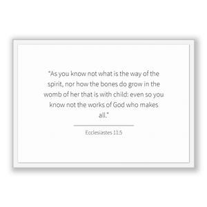 Ecclesiastes 11:5 - Old Testiment - As you know not what is the way of the spirit, nor how the bones do grow in the womb of her that is w...