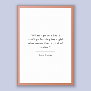 David Brenner Quote, David Brenner Poster, David Brenner Print, Printable Poster, When I go to a bar, I don't go looking for a girl who k...