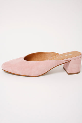 INTENTIONALLY BLANK DAISY MULES