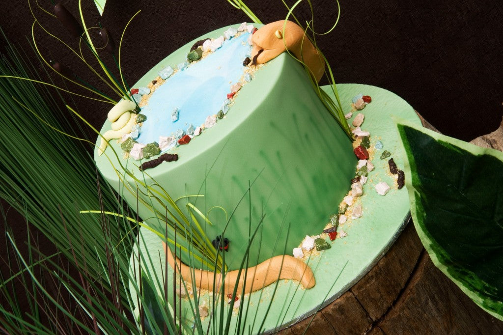 reptile-party-cake