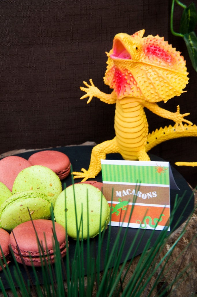 reptile-party-lolly-buffet