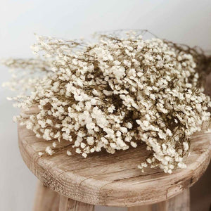 Load image into Gallery viewer, Baby's Breath Preserved Natural