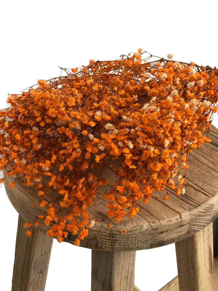 Load image into Gallery viewer, Baby's Breath Preserved Orange