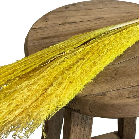 Horsetail Whisk Yellow