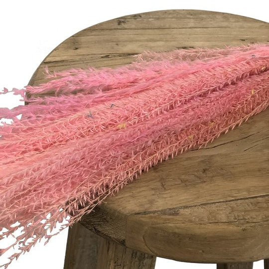 Horsetail Whisk Pink