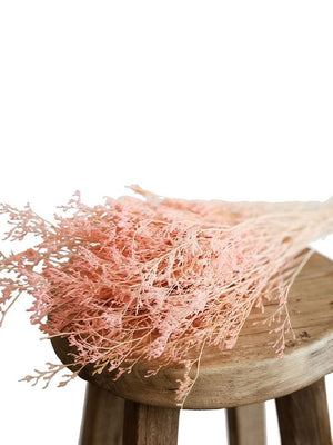 Load image into Gallery viewer, Valentine Grass Preserved