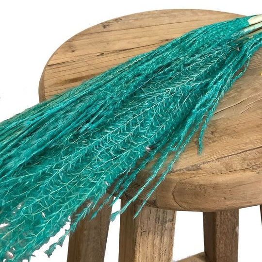 Horsetail Whisk Blue