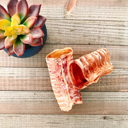 Dehydrated Beef Trachea for Dogs
