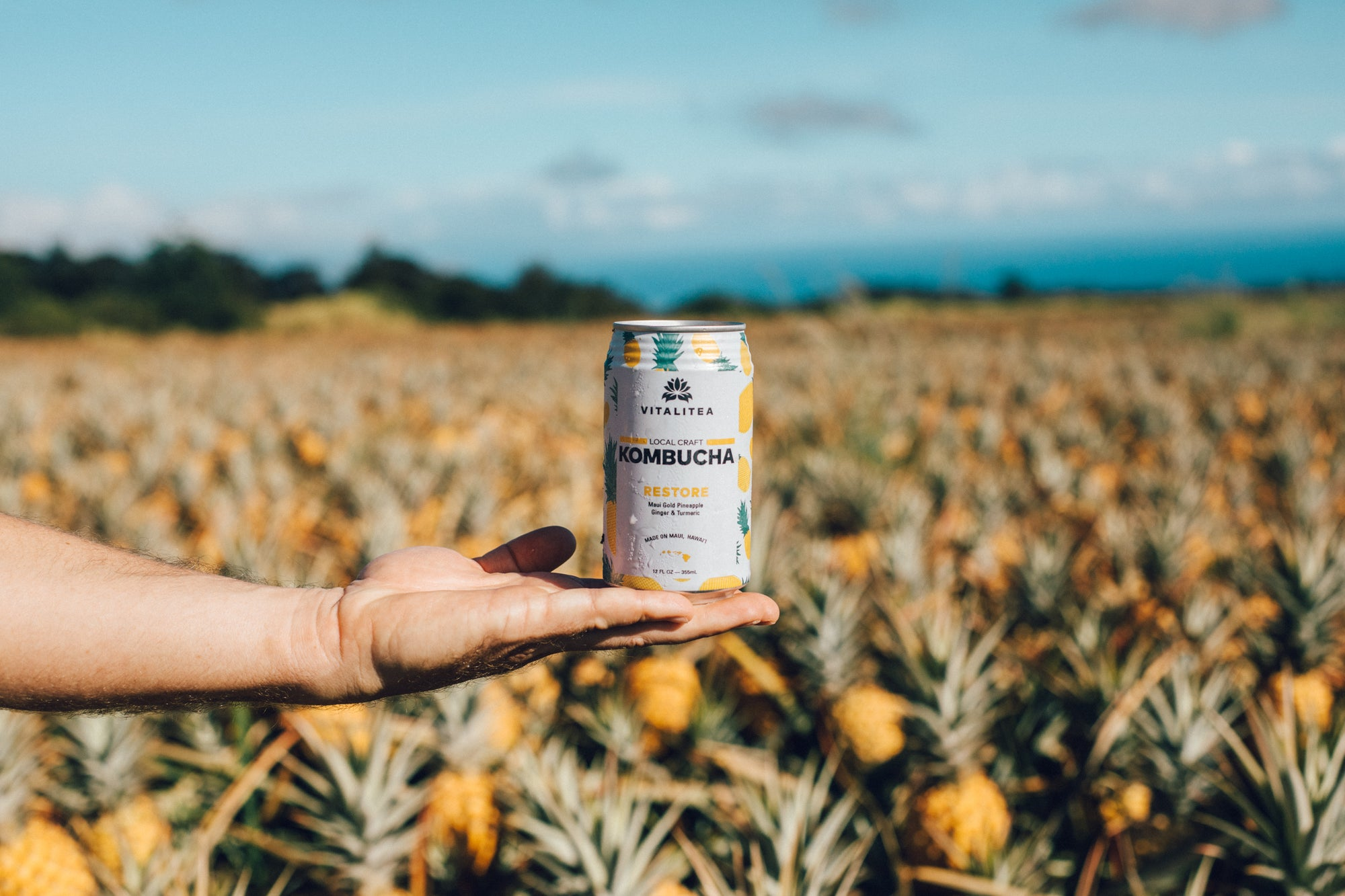#FARMTOBOOCH: Maui Gold Pineapple