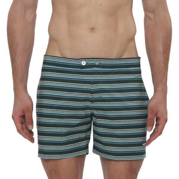 Parke and Ronen Lido Ravi Print Stretch Tailored Swim Trunk - Blue