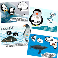 OY & OI , OW & OU Penguin themed Boom Activity for Diphthong Practice