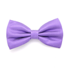 BOWTIE REGULAR PURPLE BRIGHT