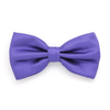 BOWTIE REGULAR PURPLE DARK