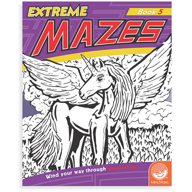 Extreme Mazes Activity Book