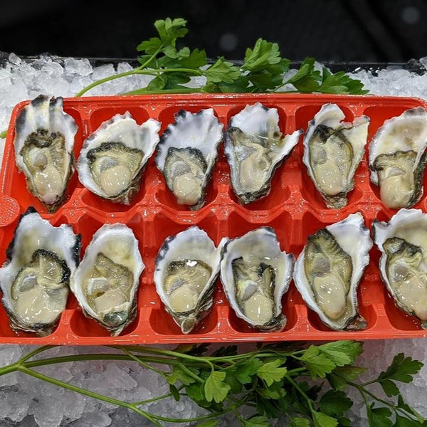 Oysters - Sydney Rock (Shucked)