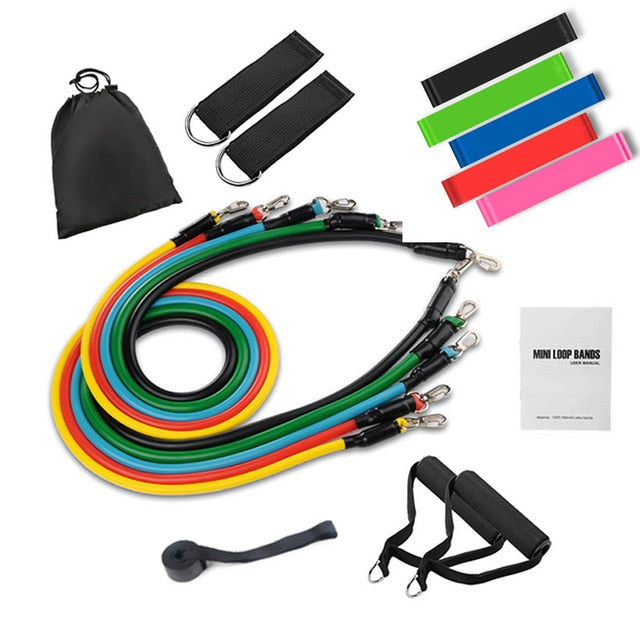 Tube Resistance Bands Set with Attached Handles Door Anchor Carrying Case and Exercise Guide Training