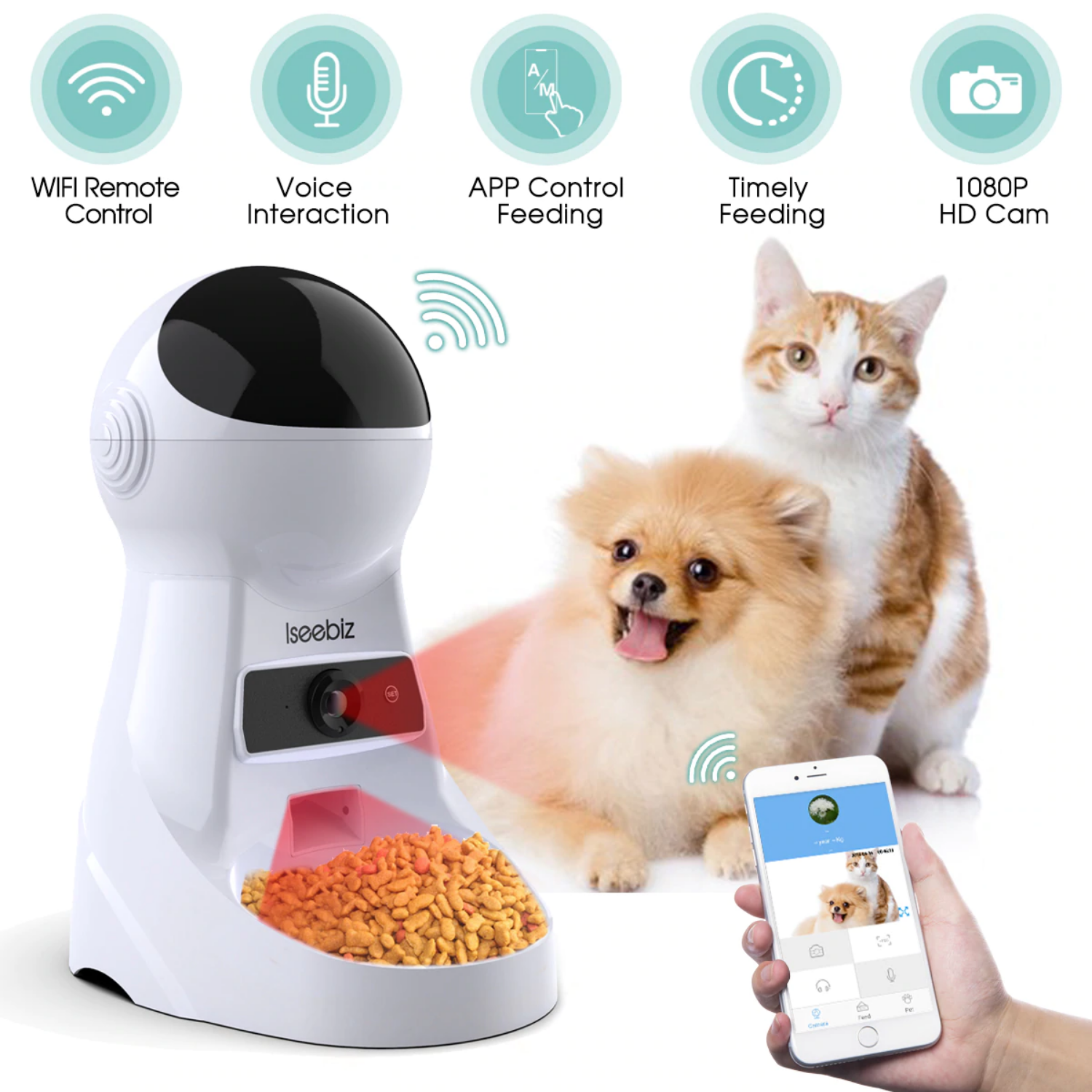 automatic timed pet feeder