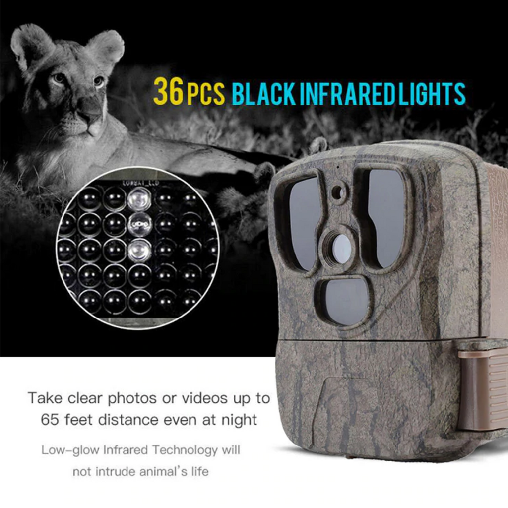 best camera for hunting videos