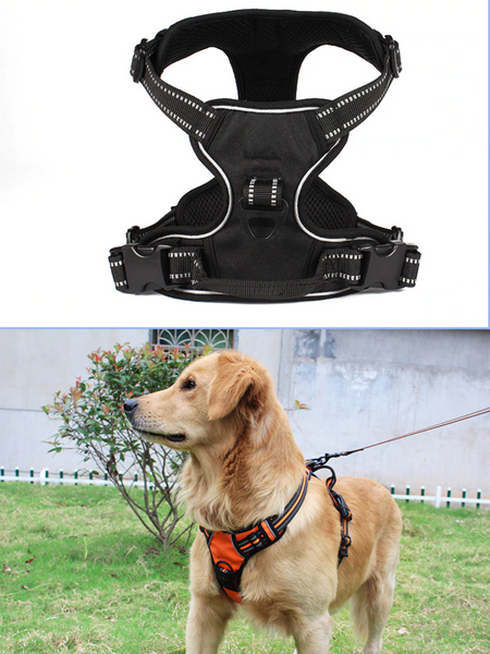 best dog reflective harness