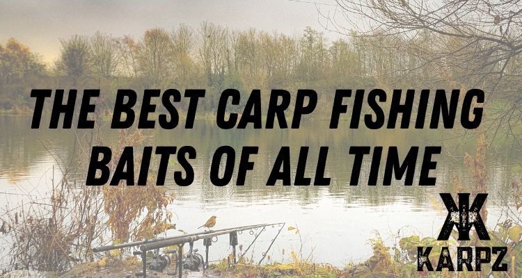 The Best Carp Baits of All Time