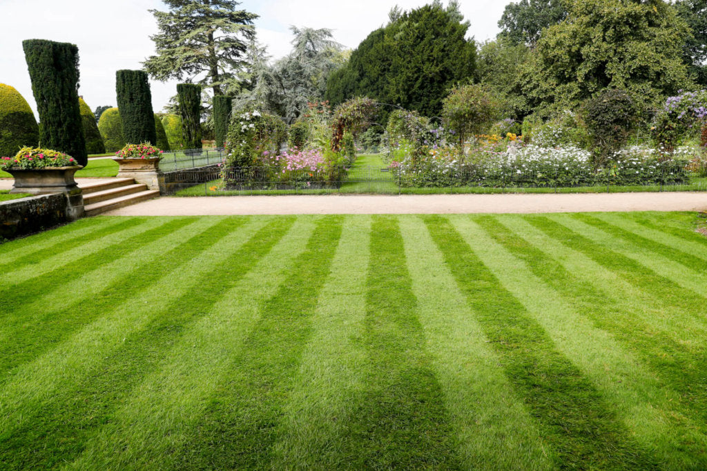 Advantage of Cylinder Mowers
