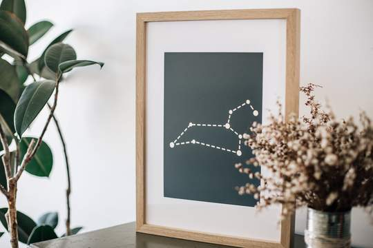 Leo Constellation print, foiled in gold foil, timber frame with white border. Preserved flowers in a vase to the right of the print.