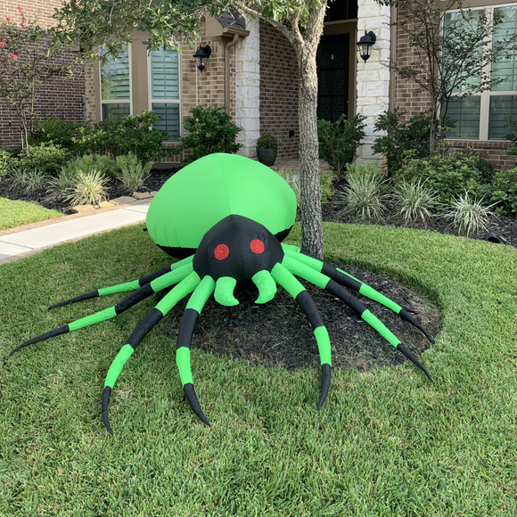 Green & Black Spider