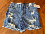 Midrise Judy Blue Distressed Shorts