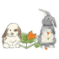 An illustration of two rabbits by a cardboard box containing carrots. One of the rabbits holds a partially-eaten carrot.