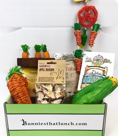 An open cardboard box displaying a selection of treats and toys and a postcard.