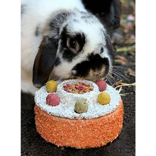 Load image into Gallery viewer, Bunny Birthday Cake with rabbit behind