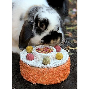 Bunny Birthday Cake with rabbit behind