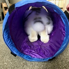 Load image into Gallery viewer, A blue tunnel showing a rabbit inside from behind.