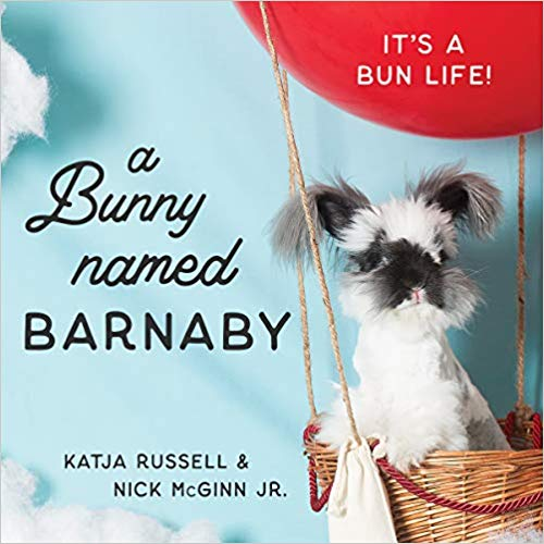 Front cover of book featuring an angora rabbit with the title 'A Bunny Named Barnaby'.
