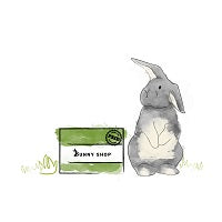 Illustration of a rabbit sat next to a box with the words 'Bunny Shop' on it.