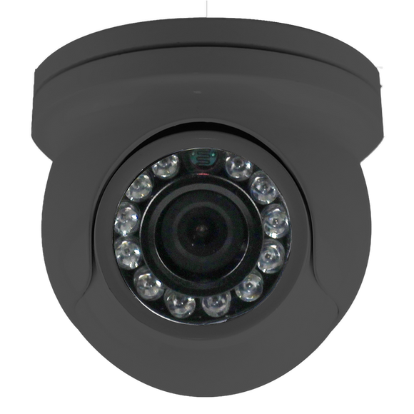 MaxxOne 2MP Fixed Golfball Camera