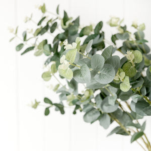 realistic artificial eucalyptus for winter and Christmas
