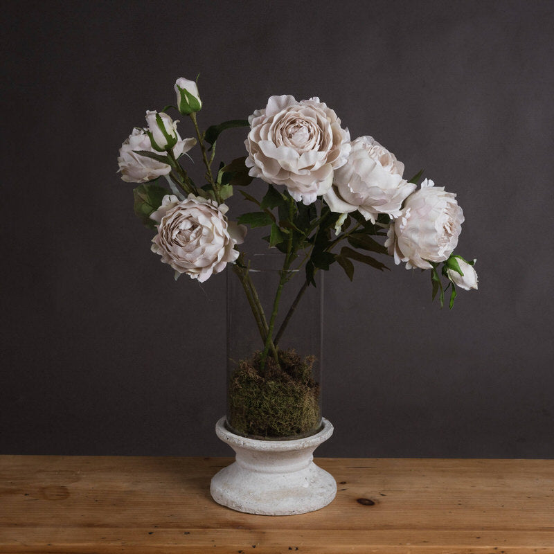 Grey blush/pale grey rose peony stem