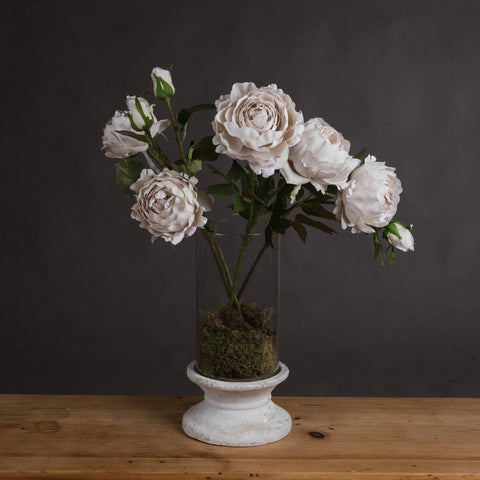 Grey blush/pale grey rose peony stem *pre order for despatch on 5th March '21*