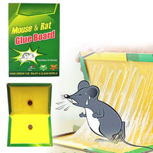 Load image into Gallery viewer, 202 Green Mice Glue Traps (1pc)