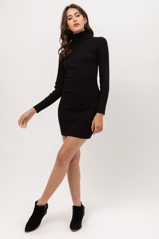 Little Black Turtle Neck Dress
