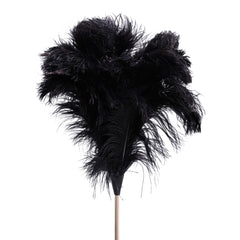 extra-large-ostrich-feather-duster