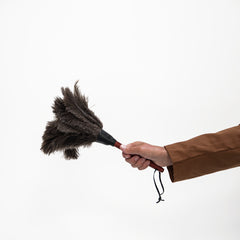 Handy Feather Duster