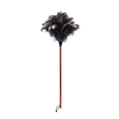 Classic Feather Duster