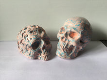 Load image into Gallery viewer, Rustic Skull Set-Blue/cornflower