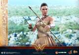 Hot Toys MMS424 - WONDER WOMAN (TRAINING ARMOR VERSION) 1/6TH SCALE COLLECTIBLE FIGURE (FREE SHIPPING)